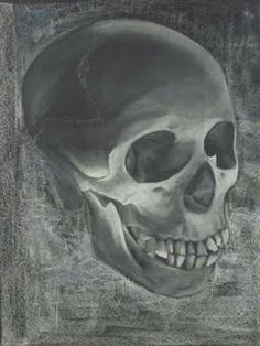 Waldorf ~ 8th grade ~ Human Anatomy ~ chalkboard drawing
