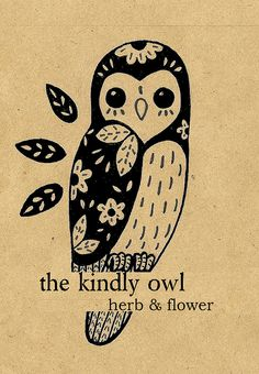'Kindly Owl' by Andrea Gutierrez