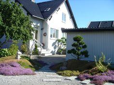 Min Japanske have i Juni 2014