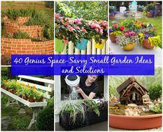 40 Genius Space-Savvy Pequeño Jardín Ideas y Soluciones - bricolaje y manualidades