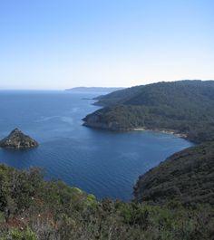Port-Cros National Park #park #provence #nature #portcros #tourismepaca