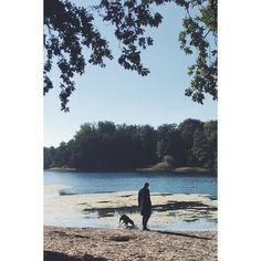 #sunday at #grunewaldsee with #sandorthevizsla   #berlin #sundaymood #lake #woods #nature #vizslasofinstagram #vizsla #iflmd #fall