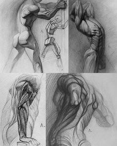 Pin de francisco antonio en anatomía anatomy drawing, anatomy sketches y hu Human Anatomy Drawing, Body Drawing, Anatomy Art, Body Anatomy, Life Drawing, Male Figure Drawing, Figure Drawing Reference, Anatomy Reference, Anatomy Sketches