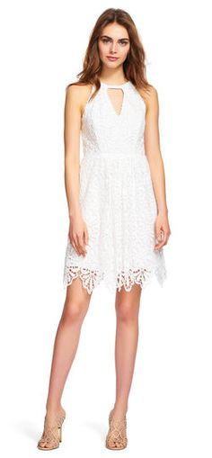 Adrianna Papell   Lace Halter Fit and Flare Dress