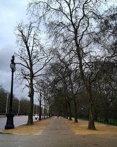 #stillaboutlondon #london #LONDONBABY #londres #misslondon #londonlife #rainyday #igmood #buckingham #garden #walkingaround #travel #aroundtheworld #travelgram #ig_naturelovers #ig_london #travelling #rainymood #bf #trip #igtravel #igers #calm #peaceofmind by tanyacmartins