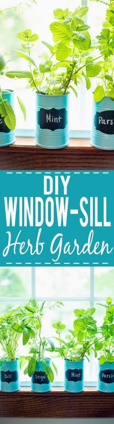 How to Make a DIY Indoor Window Sill Herb Garden - Save money, prevent food waste, and bring a little green inside with this easy and cheap DIY Indoor Window Sill Herb Garden for fresh herbs all year long! #Savemoneywithdiy