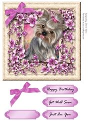 - This Card Front comes with a bow decoupage and 4 labels reading Happy Birthday, Get Well Soon , Just For You and one blank Quick Cards, Animal Cards, Decoupage, Card Making, Happy Birthday, Just For You, Bows, Mini, Frames