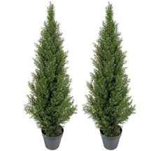 TWO Pre-potted 4' Artificial Cedar Topiary Outdoor Indoor Tree ** Check this awesome product by going to the link at the image.
