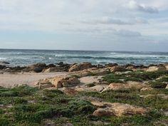 Windy days @ Cape St Francis SA
