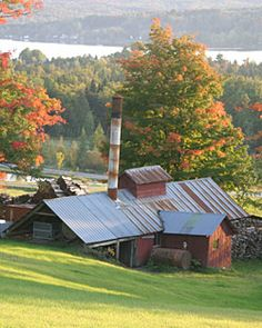 """Northeast Kingdom"", Vermont (A maple syrup shack near Derby) - great place to see moose and amazing scenery!"
