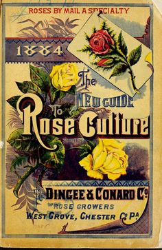 1884 the new guide to rose culture