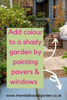 Add colour to a north facing garden #gardening #garden #middlesizedgarden #backyard