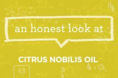 What is Citrus Nobilis (Mandarin Orange) Oil? | via The Honest Company Blog