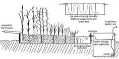 Výsledek obrázku pro permaculture water
