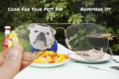 Cook For Your Pets Day // November 1 // ‪#‎Aviator‬ RB6049 2500 // http://neverhi.de/4l4b