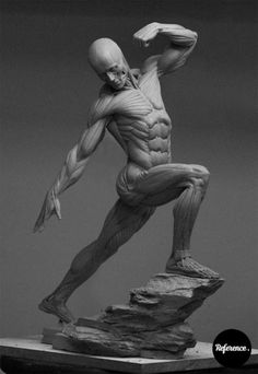 Eric Michael Wilson It's done! The dynamic male anatomy figure is finished. I set out to make the most diverse and accurate anatomical figur…