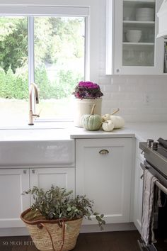 White vintage kitchen, kale plant, white pumpkins, french basket- Fall Kitchen Tour
