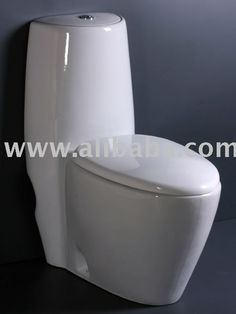 one piece toilet, water closet, p-trap and s-trap toilet, wc toilet
