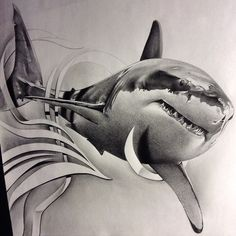 Getting some drawing done, thought I'd share this #greatwhite  #shark I did a while back in honor #sharkweek #sharkfest have some huge projects coming up! Can't wait to get them started!! #stayhungry #pencil #work #graphite #realism #sketch_daily #WorldofArtists #worldofpencils #arts_mag #artfido #arts_gallery #tattoo #spooky