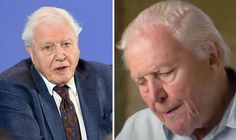 "SIR DAVID ATTENBOROUGH made a heartbreaking plea to humanity to change its relationship with nature after the legendary TV presenter admitted ""I don't have long left""."