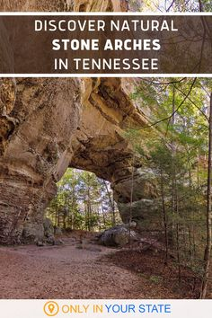 The Big South Fork National River and Recreation Area in Tennessee is home to beautiful, natural stone arches that you won't want to miss. Hike through this park and enjoy trails with sandstone cliffs, limestone and shale rock formations, and these magical arches. | Beautiful Day Trip Destinations | Things To Do | Family Friendly | Outdoors | Wonders | Photography Beautiful Places In America, Oh The Places You'll Go, Places To Visit, Vacation Spots, Vacation Ideas, Tennessee State Parks, South Fork, Camping Places, Local Attractions