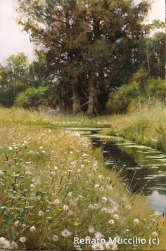 This is a painting! Renato Muccillo Fine Arts Studio - Ford Road Field in Summer Paintings I Love, Beautiful Paintings, Beautiful Landscapes, Landscape Art, Landscape Paintings, Wow Art, Oeuvre D'art, Monet, Painting Inspiration