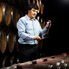 Al viñedo La Mascota de Argentina le tomó años crear un vino tinto que compita con lo mejor de Europa. Al final, lo lograron con su nuevo Cabernet Sauvignon Cabernet Sauvignon, Wine, Mens Tops, Create, Europe, Pets, Argentina