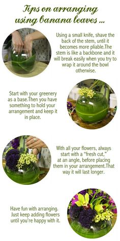 Tips of flower arrangements using banana leaves #flowers #bananaleaves #arrangements