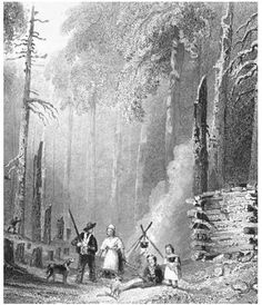 early settlers out west - Google Search