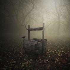 bluepueblo:  Raven's Well, Poland photo Leszek Bujnowski
