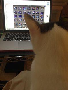 Luca workin' on Mac