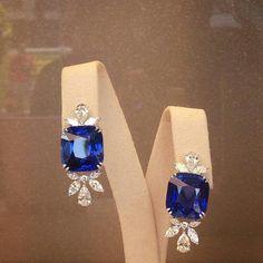 @chopard #amazing #sapphire #drop #earrings #diamonds #love #colors #diamond