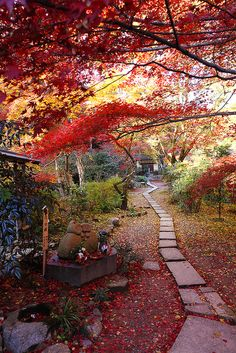 - With the arrival of rains and falling temperatures autumn is a perfect opportunity to make new plantations Beautiful World, Beautiful Gardens, Beautiful Places, Japanese Landscape, Photos Voyages, Kyoto Japan, Japan Sakura, Japan Japan, Japanese Culture