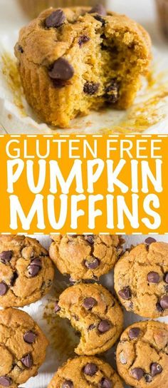 gluten free recipes Soft and moist, these gluten free pumpkin muffins are filled with pure pumpkin, fall spices and chocolate chips. Enjoy a delicious muffin in the morning this fall without all the gluten! Muffins Sans Gluten, Cookies Sans Gluten, Dessert Sans Gluten, Gluten Free Sweets, Dairy Free Recipes, Gluten Free Pumpkin Cookies, Gluten Free Party Food, Paleo Pumpkin Muffins, Gluten Free Drinks