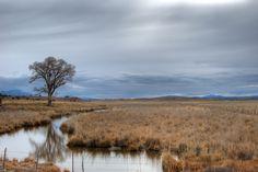 Rancho Perdido 2.0 by Jeff Morley