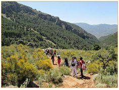 La Naturaleza y Tú, programa dirigido a escolares en Andalucía.
