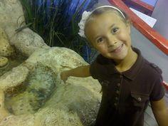 3 Reasons to Visit the Oklahoma Aquarium in Jenks