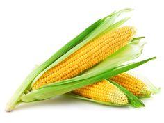 Maíz dulce. Origen: América. El órgano de consumo del maíz es el grano de maíz en estado inmaduro. Se puede preparar desgranado o aún adherido a la mazorca y es siempre cocido en ensaladas , guisos y otros platos. Ideal para palomitas.