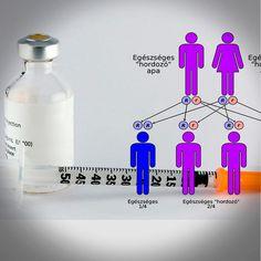 ¿La Diabetes Es Hereditaria? – La Verdad Sobre Los Riesgos Genéticos - https://www.sorihe.com/blog/la-diabetes-es-hereditaria-la-verdad-sobre-los-riesgos-geneticos/