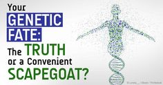 The science of epigenetics challenges the conventional view of genetics, proving that the environment determines which traits a gene will express. http://articles.mercola.com/sites/articles/archive/2014/09/30/genetics-research.aspx