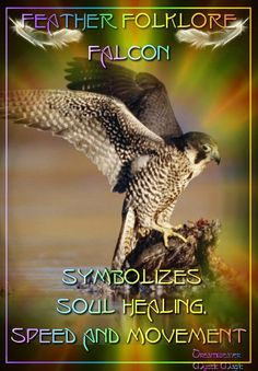 Falcon - symbolizes soul healing, speed and movement Spirit Animal Totem, Animal Spirit Guides, Animal Totems, Magick, Witchcraft, Monuments, Pagan Witch, Wiccan, Witches