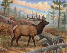 elk coloring pages to print | Elk Print - AllPosters.co.uk