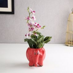 a4e75ef8150 This cute looking ceramic elephant red table top planter will make a  lovely. Ceramic ElephantCenterpiece DecorationsBeautiful HomesGlass VasePotsKids  ...