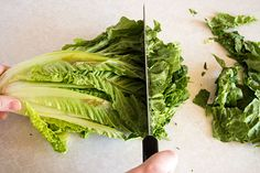 How to cut romaine lettuce for salads the fastest and easiest way possible. Lettuce, Cabbage, Salads, Vegetables, Easy, Food, Veggies, Vegetable Recipes, Meals