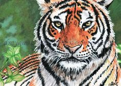 ACEO Original art animals wild cat tiger eyes miniature illustration - SMcNeill #ebay #aceo #art #animal #tiger