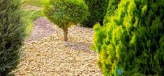 stone-mulch Wood Chip Mulch, Types Of Mulch, Rubber Mulch, Organic Mulch, Crushed Stone, Weed Seeds, Landscape Fabric, Garden Beds