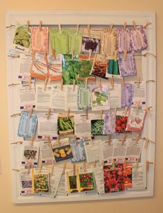 Alphabetically displayed seed packets clipped on jute with small wooden clothes pins hung on a large wooden frame.