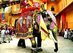 The Elephant Festival is an annual event held every year at Jaipur the capital city of Rajasthan. The Elephant Festival Elephant India, Indian Elephant, Elephant Love, Elephant Art, Colorful Elephant, Elephant Stuff, Elephant Images, Elephant Blanket, Elephant Parade