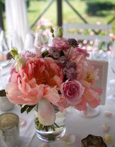 pivoine - rose