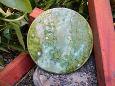 Items similar to Moss Affection 6 inch round tile- green decor tile- beautiful ceramic art on Etsy Painting Ceramic Tiles, Ceramic Art, Bipolar Art, Table Coasters, Moss Art, Beautiful Forest, Happy Art, Hand Painted Ceramics, Custom Art